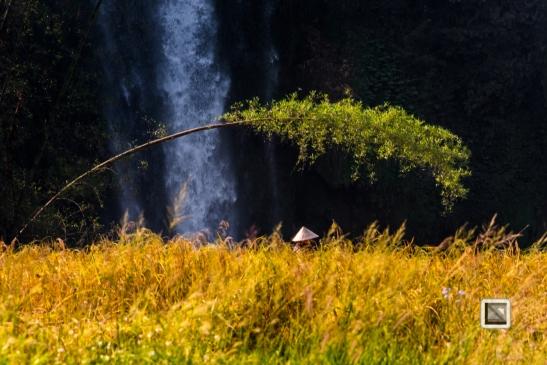 vietnam-cao_bang_province-ban_gioc_detian_waterfalls-27