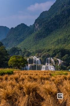 vietnam-cao_bang_province-ban_gioc_detian_waterfalls-33