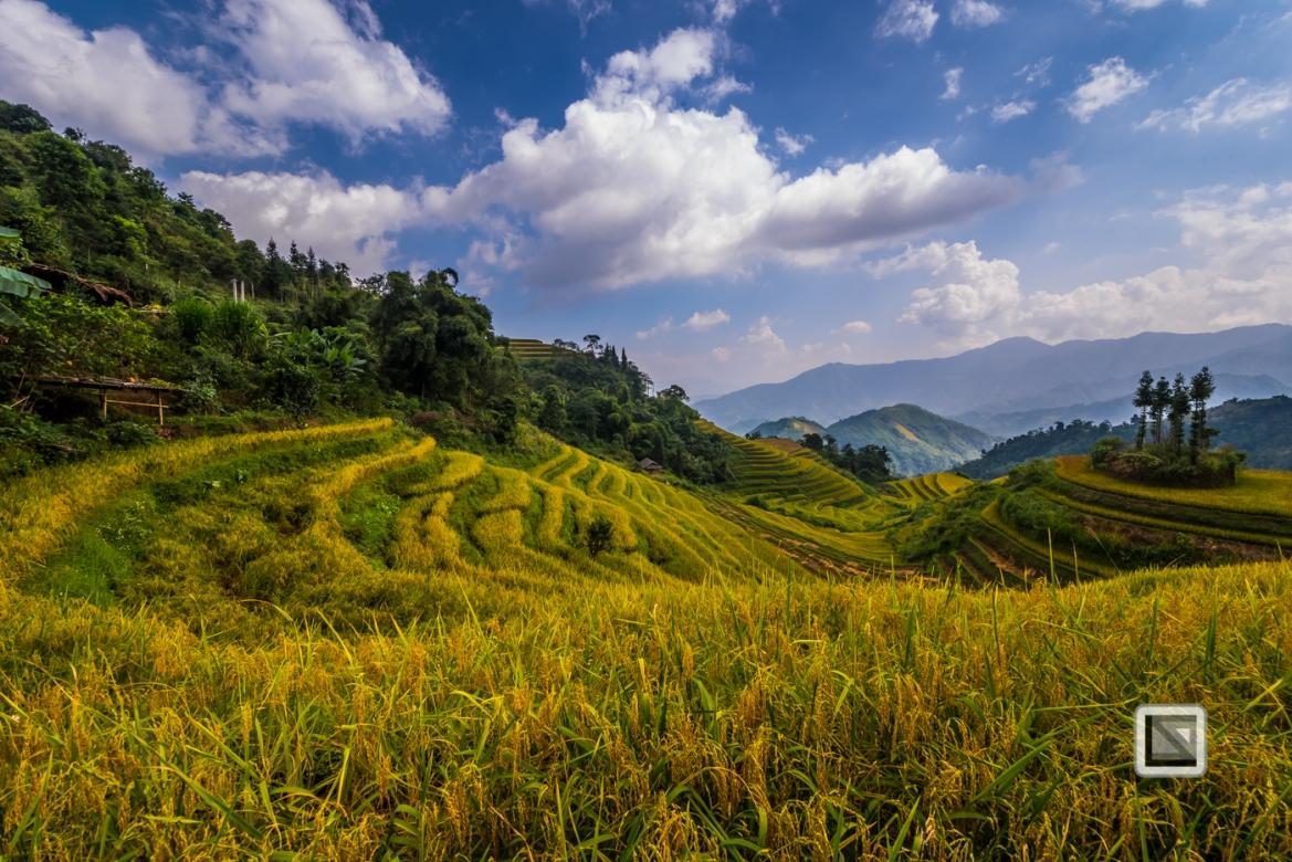 vietnam-ha_giang-bac_quang-27