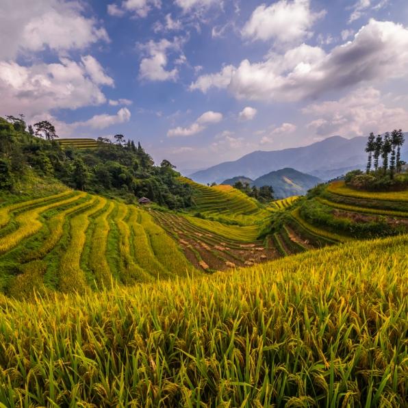 vietnam-ha_giang-bac_quang-36