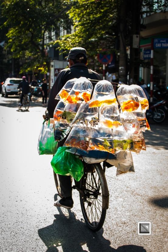 vietnam-hanoi-16