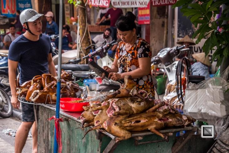 vietnam-hanoi-dog-2-2