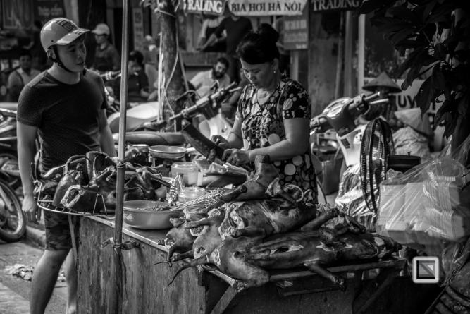 vietnam-hanoi-dog-2