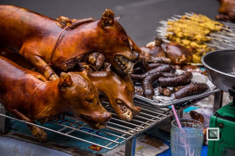 vietnam-hanoi-dog-6