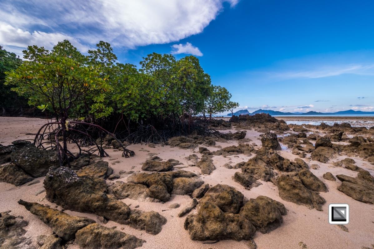 Thailand-Koh_Kradan_Island-24