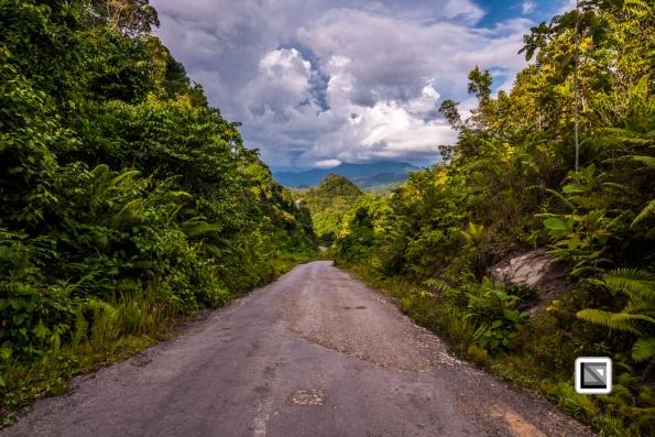 Malaysia-Sarawak-Jungle_Road-17