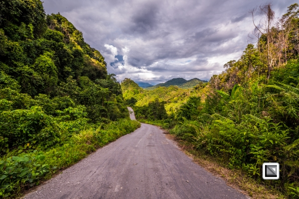 Malaysia-Sarawak-Jungle_Road-20