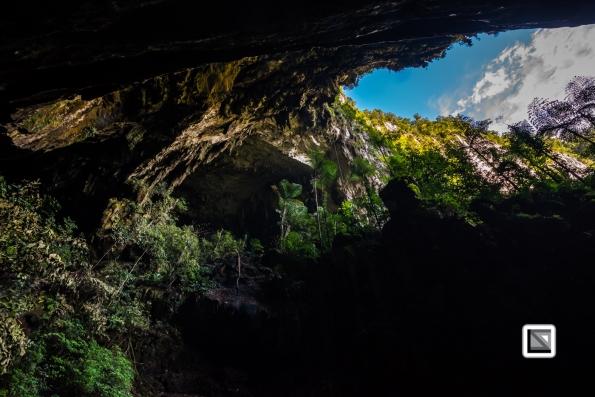 Malaysia-Sarawak-Mulu_Nationalpark-73