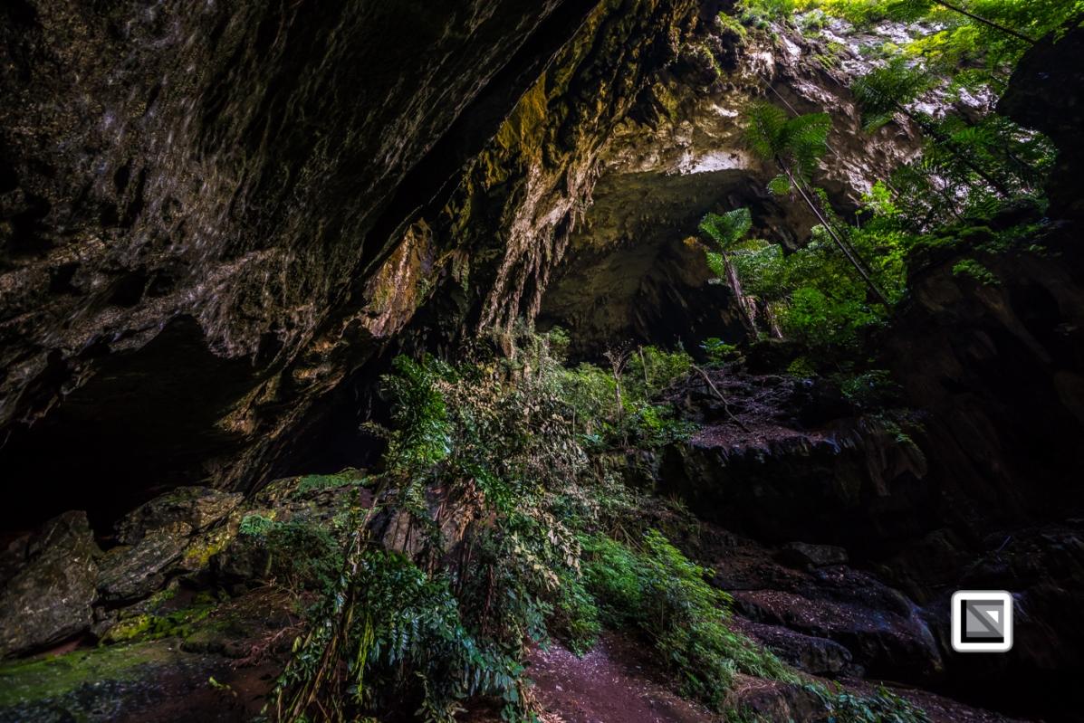 Malaysia-Sarawak-Mulu_Nationalpark-76