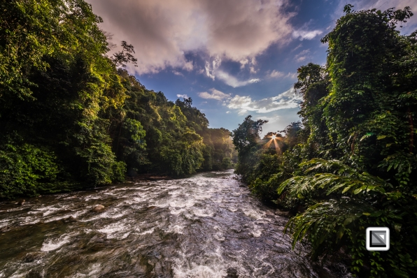 Malaysia-Sarawak-Mulu_Nationalpark2-102
