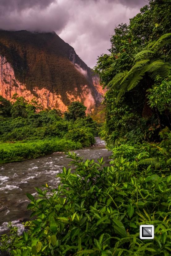 Malaysia-Sarawak-Mulu_Nationalpark2-104