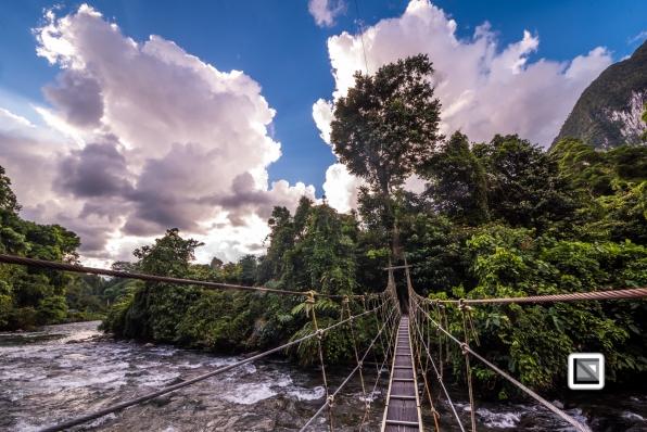 Malaysia-Sarawak-Mulu_Nationalpark2-98
