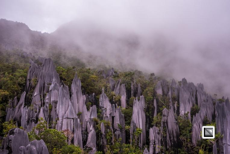 Malaysia-Sarawak-Mulu_Pinnacles-36