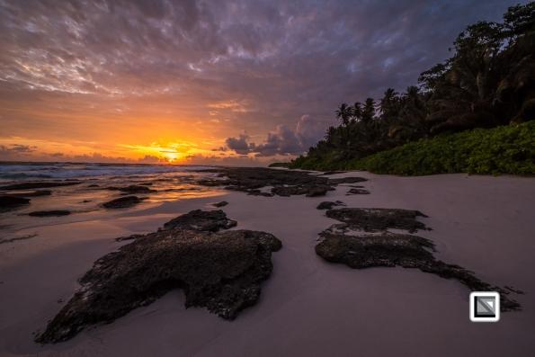 Indonesia-Castaway-9973