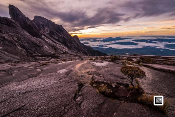 Malaysia-Borneo-Sabah-Mount_Kinabalu-51