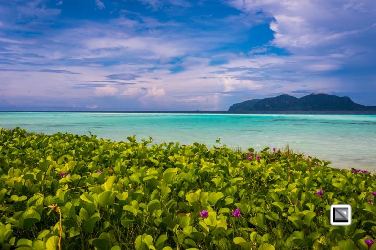 Malaysia-Borneo-Sabah-Semporna_Area-8700