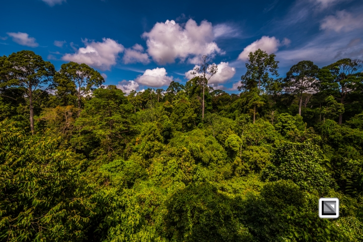 Malaysia-Borneo-Sabah-Sepilog-29