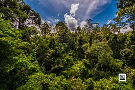 Malaysia-Borneo-Sabah-Sepilog-43