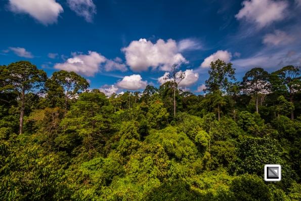 Malaysia-Borneo-Sabah-Sepilog