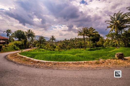 Indonesia-Sumatra-100