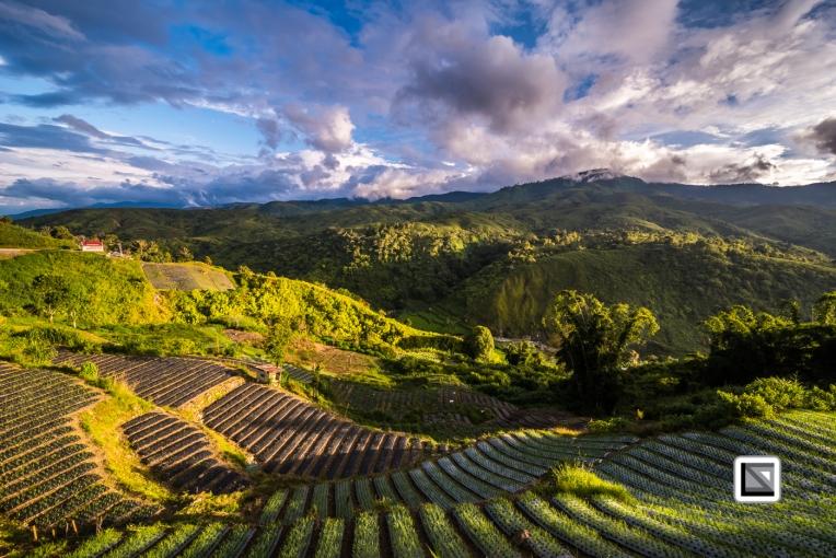 Indonesia-Sumatra-155