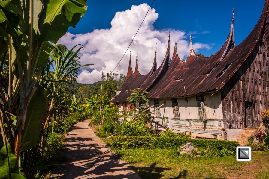 Indonesia-Sumatra-160