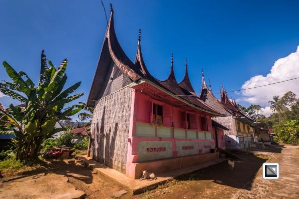 Indonesia-Sumatra-176