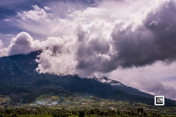 Indonesia-Sumatra-235