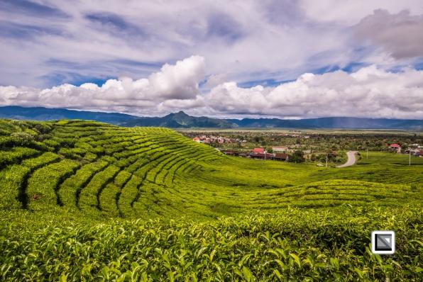 Indonesia-Sumatra-269