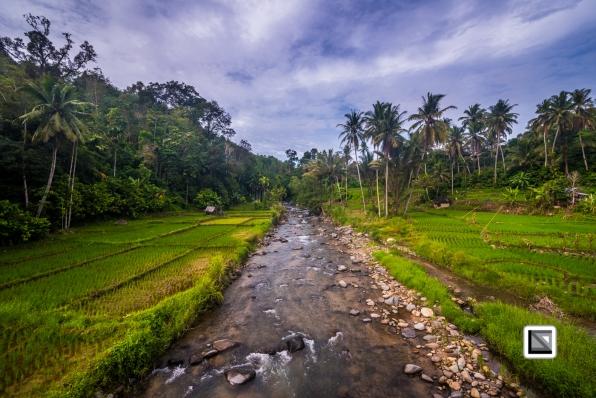 Indonesia-Sumatra-50