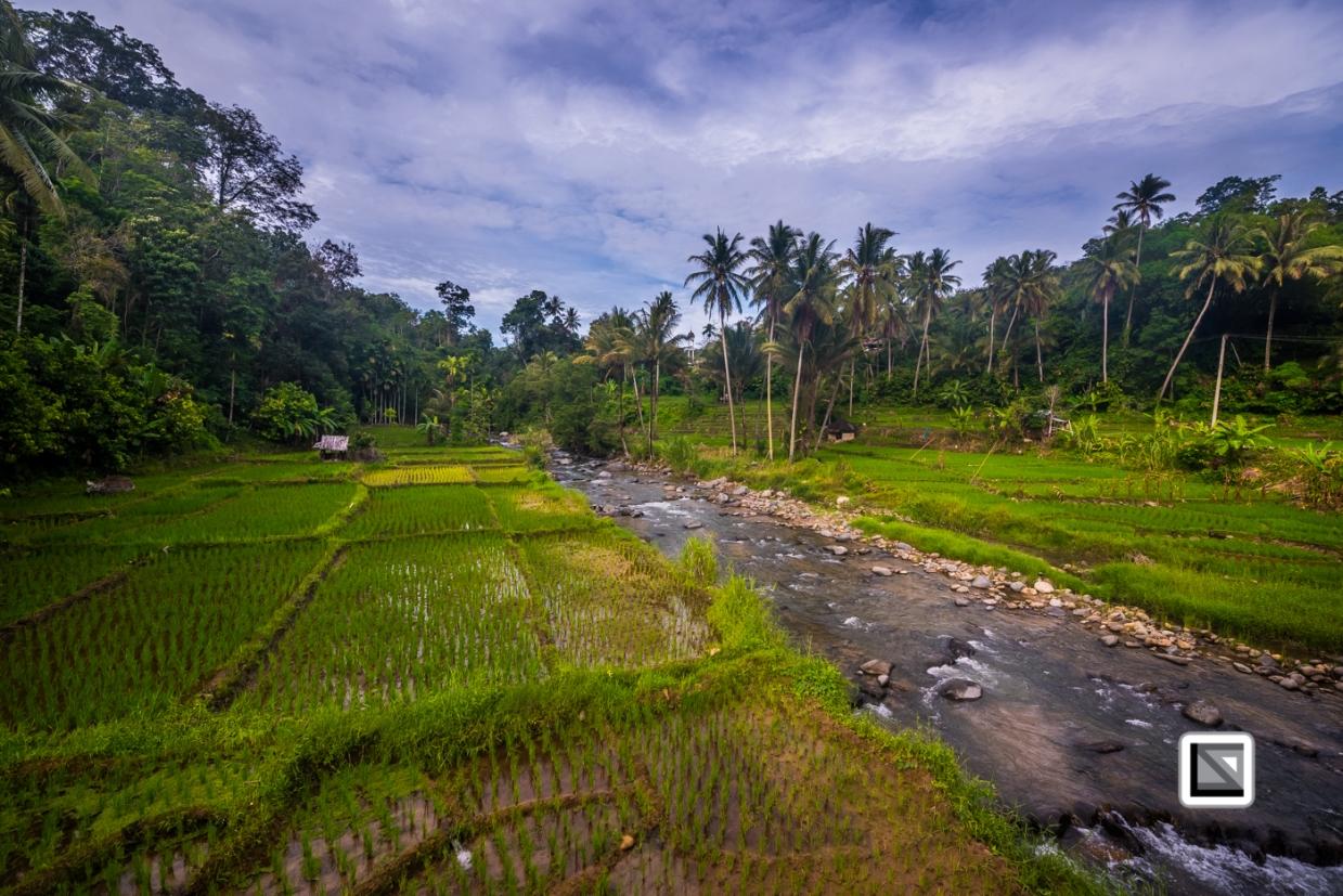 Indonesia-Sumatra-53