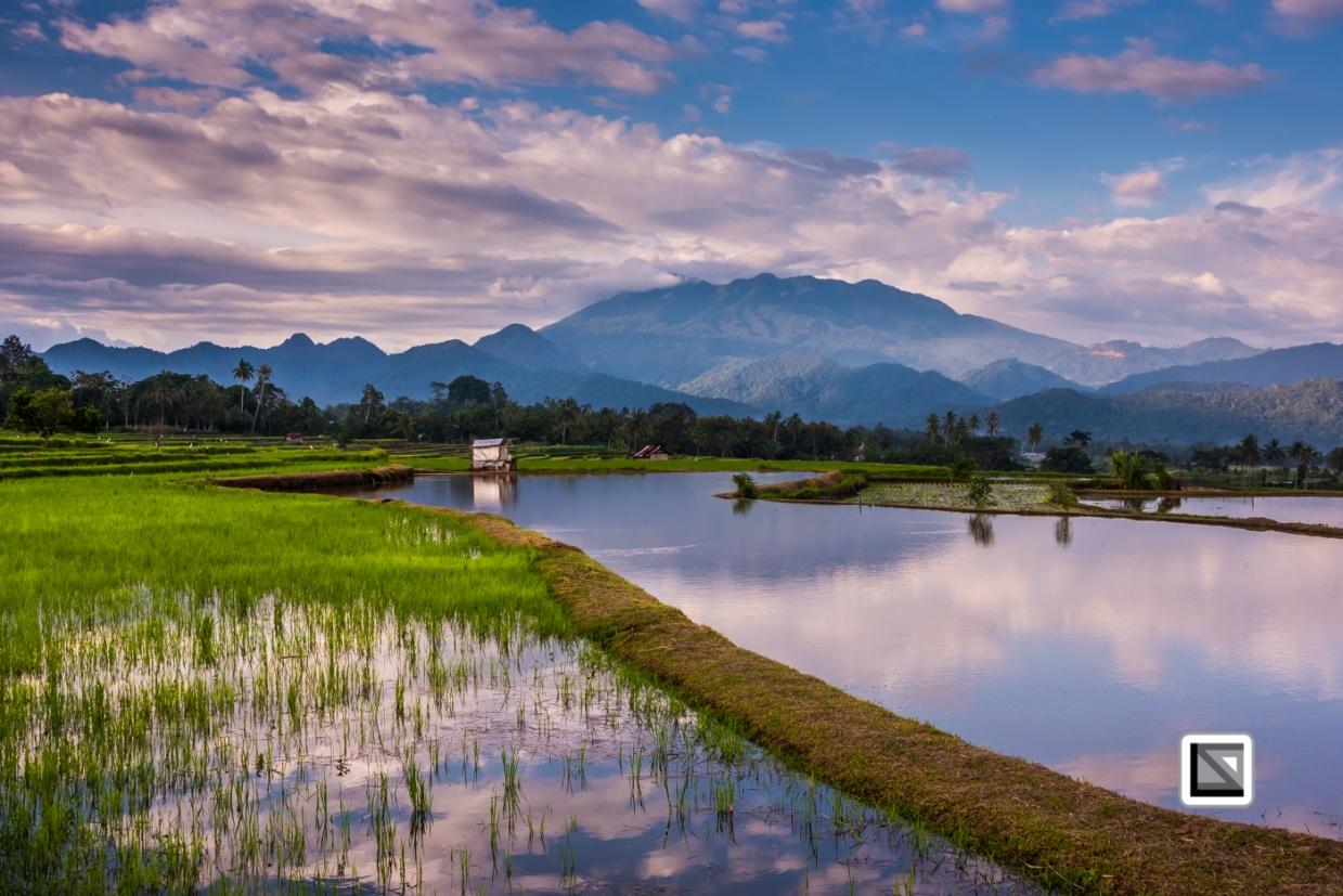 Indonesia-Sumatra-70