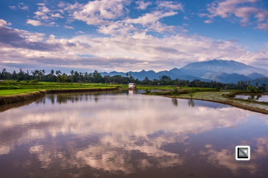 Indonesia-Sumatra-74
