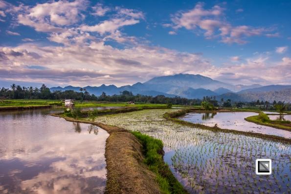 Indonesia-Sumatra-75