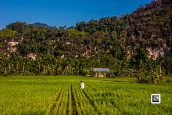 Indonesia-Sumatra-86