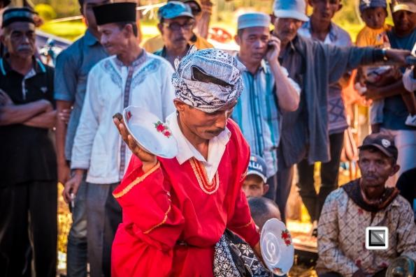 Indonesia-Sumatra-Pacu_Jawi-69