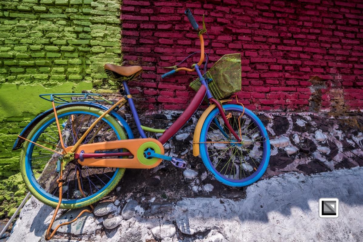 Indonesia-Java-Malang_Jodipan_Cultural_Village-24