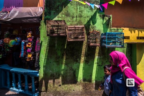 Indonesia-Java-Malang_Tridi_Cultural_Village-80
