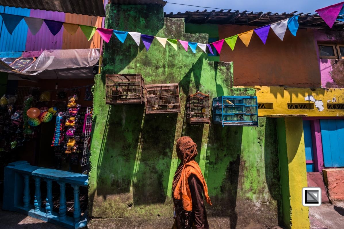 Indonesia-Java-Malang_Tridi_Cultural_Village-84