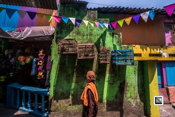 Indonesia-Java-Malang_Tridi_Cultural_Village-85