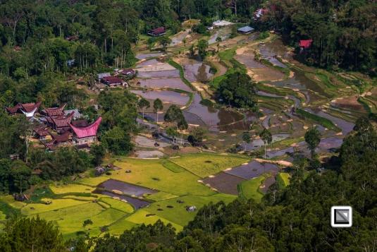 Indonesia-Toraja-23