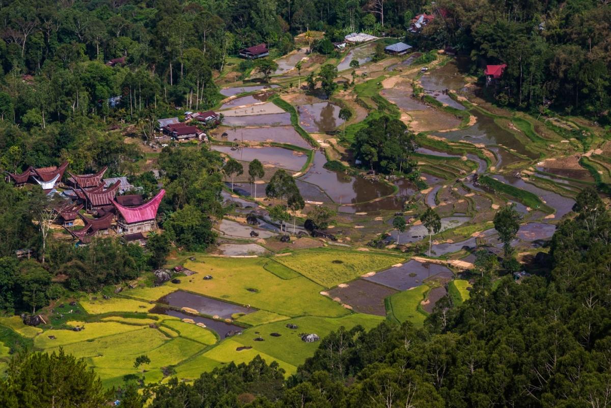 Toraja - Nature