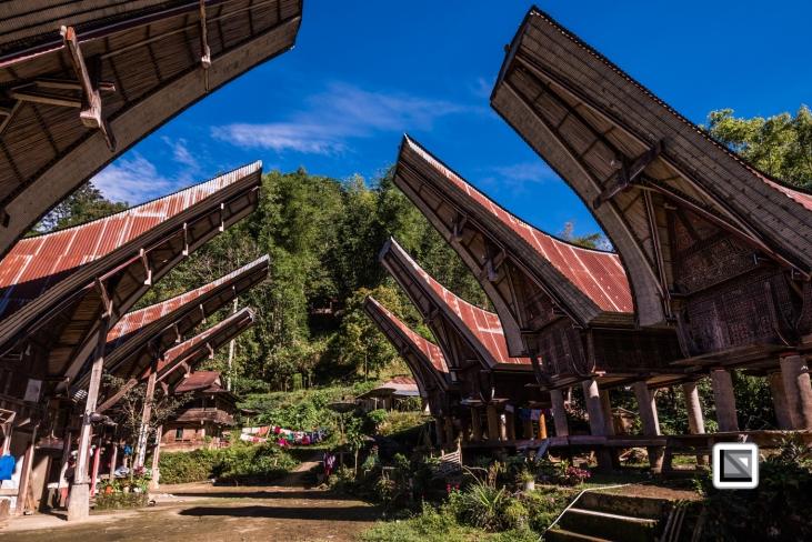 Indonesia-Toraja-267