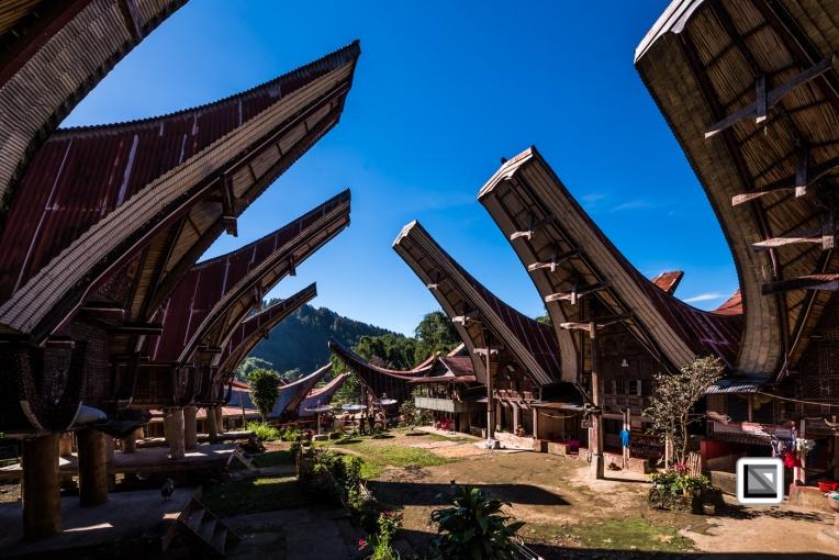 Indonesia-Toraja-271