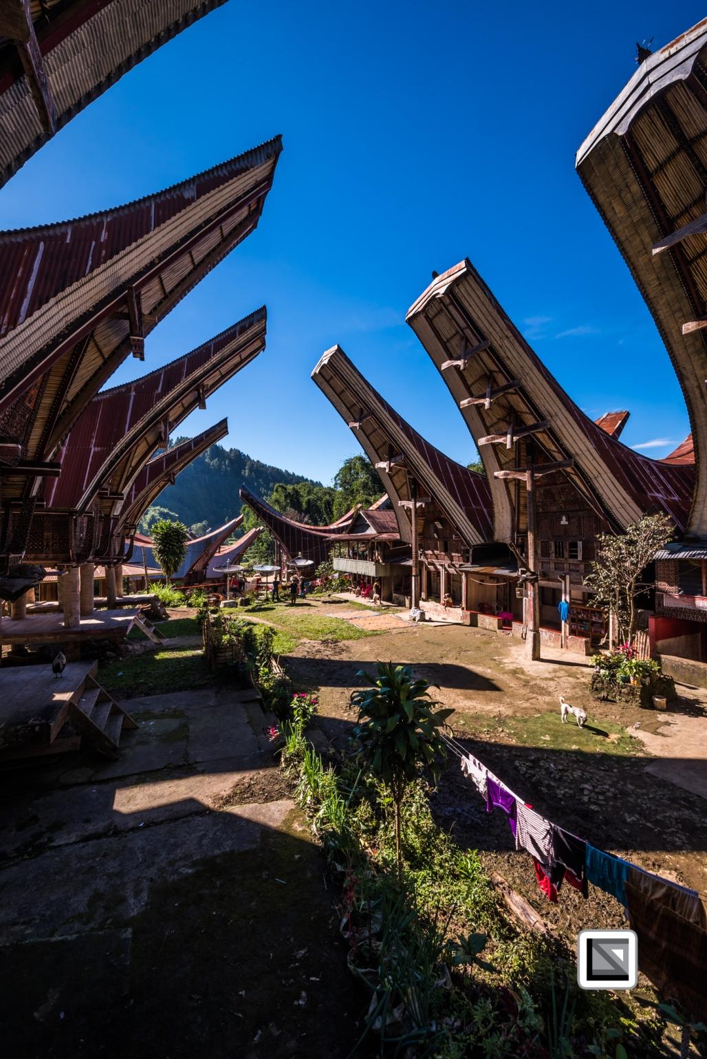 Indonesia-Toraja-273