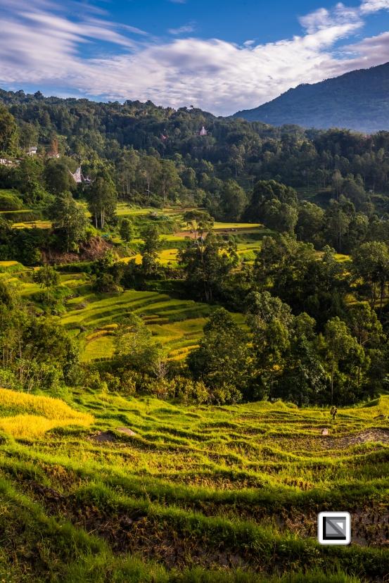 Indonesia-Toraja-53