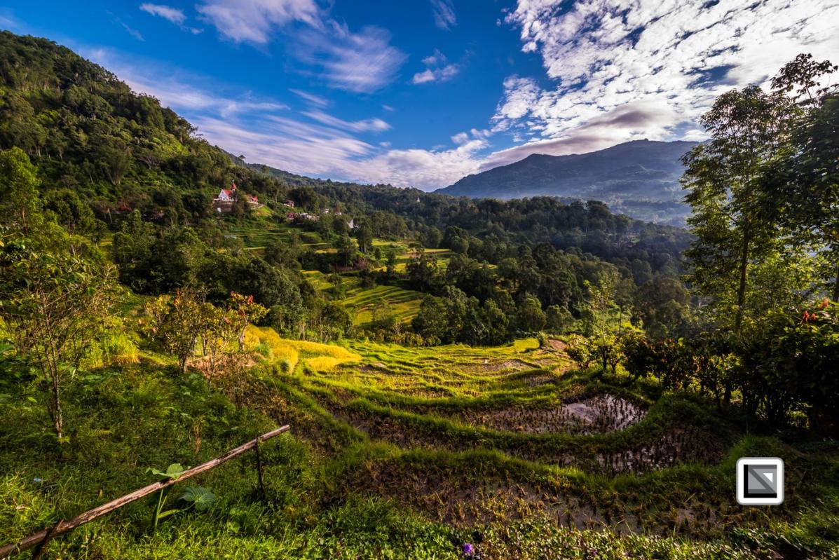 Indonesia-Toraja-57