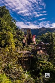 Indonesia-Toraja-59