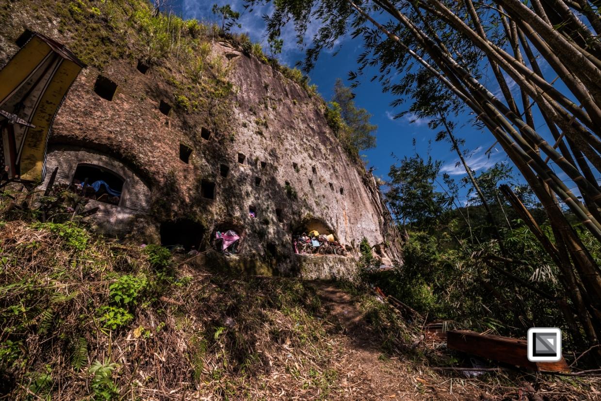 Indonesia-Toraja-Baruppo-Ricefields-15