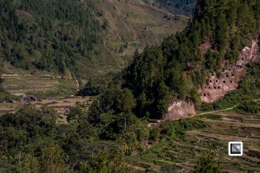 Indonesia-Toraja-Baruppo-Ricefields-4
